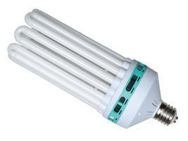 NTS Compact Fluorescent Bulb (CFL)