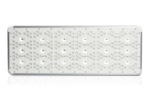 MAXORB 1512W LED GROW LIGHT