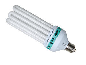 Compact Fluorescent Bulb Blue