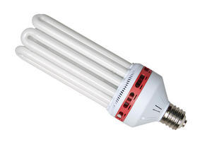 Compact Fluorescent Bulb Red